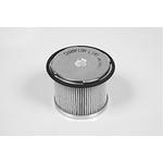 Champion CFF100141 filter goriva Peugeot/Citroen 1.9D