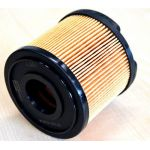 Champion CFF100251 filter goriva Peugeot/Citroen
